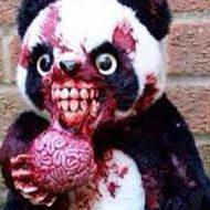 【恐怖】かわいいイメージしかないパンダに襲われる瞬間をご覧ください