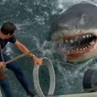 【サメ注意】ジョーズ並みの迫力!呑気に釣りしてたら痛い目会うぜww
