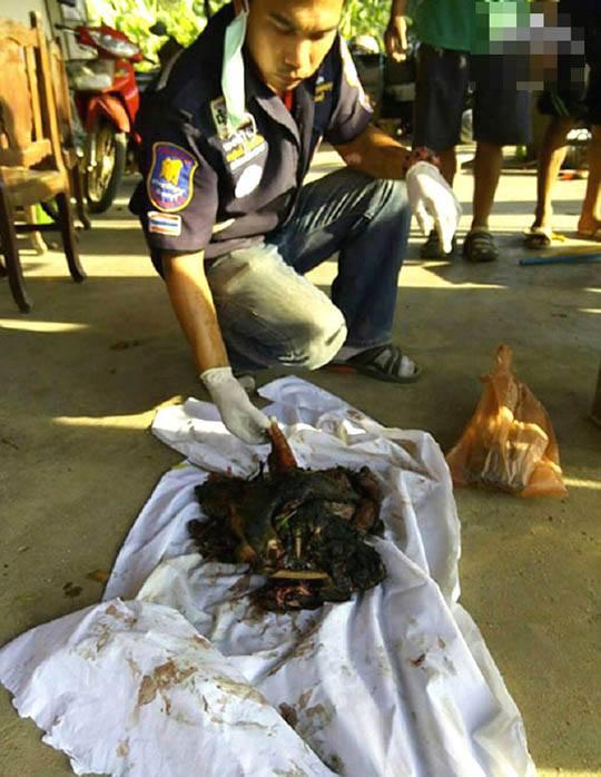 【グロ画像】女の子が農家で使う肥料の管理を誤った結果→全身が木端微塵で畑の肥やしになってしまった模様www※閲覧注意