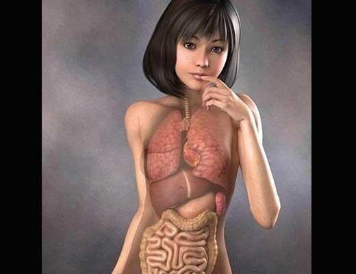 【女の子 解剖】貧乳女子のお腹掻っ捌いて中身がしっかり詰まってるか確認していく! ※無修正エログロ動画