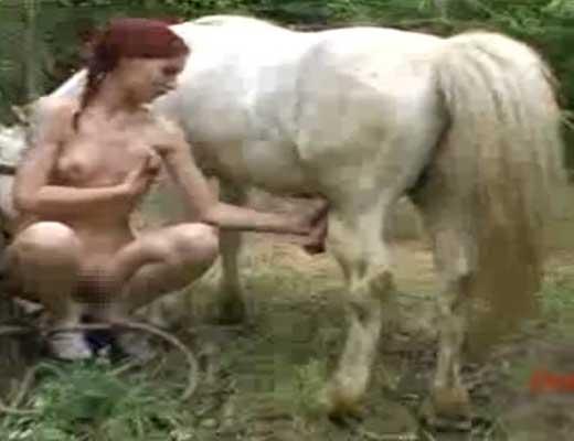 【本物獣姦】もしも森の中でエッチなお姉さんと白馬が出会ってしまったら→お馬さんの精子絞りが始まる模様w ※無修正エロ動画