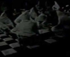 【秘密結社】フリーメイソンの会議に潜入したスパイさんから送られてきた映像が完全にホラー ※衝撃映像