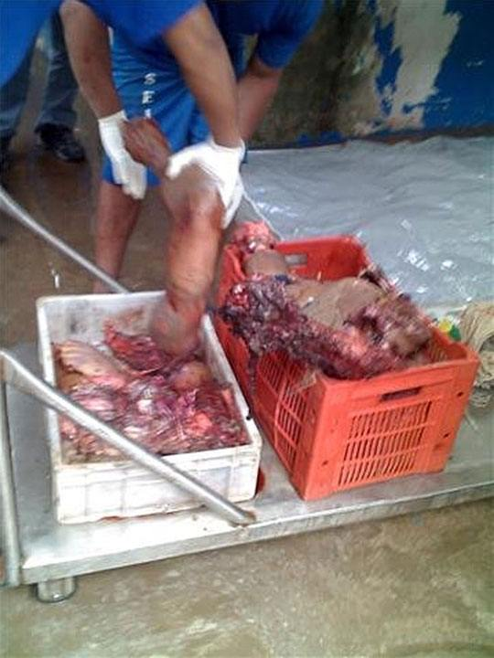 【人間解体】人間の三枚おろしって見たことある?骨と肉と内臓を完全に取り出す刑務所内の現場が怖E~ ※グロ画像