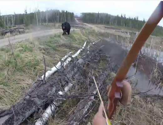 【主観映像】熊に出会った弓だけ装備の丸腰ハンターさん 弓を射る前に襲われる映像をFPS視点でご覧ください・・・ ※衝撃動画