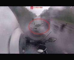 【バイク事故】雨の日のツーリングが危険ということを女の子が死をもって教えてくれてれてるぞいw ※衝撃映像