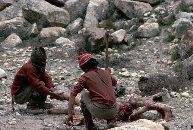 【鳥葬】人間の死体を一口大の大きさにして鳥に食べさせて葬式する国があるらしい・・・ ※グロ画像