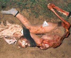 【女 死体】レイプされ殺されヤリ捨てられた少女さんで抜ける奴は来てくれ!まぁ動物さんにお肉食べられて色々欠損してるんやがなw ※エログロ画像