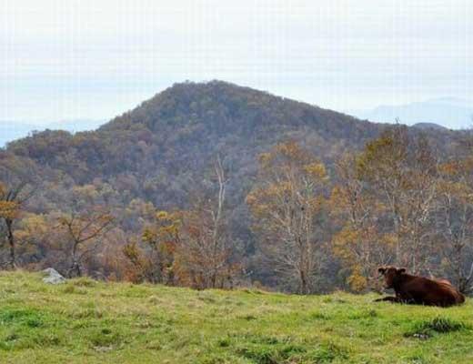 黒森山風景写真