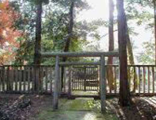 野田山墓地風景写真