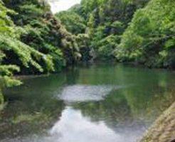 【神奈川県心霊スポット】散在ガ池森林公園(鎌倉湖)