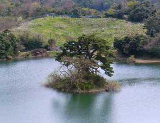 多鯰ヶ池風景写真