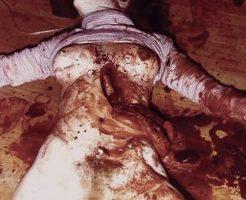 【閲覧注意】妊婦を射殺、腹を切り裂いて血をすすって飲んだ連続殺人者「リチャード・チェイス」