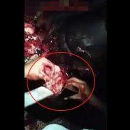 【殺人映像】ムカつくやつの頭カチ割って脳みそ手ごねハンバーグ作ってるけど何か質問ある? ※グロ動画