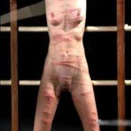 【エロ拷問】ドSのレズ女王様が女の子をムチ打ちして全身傷だらけにしたりおっぱい押しピン刺したりしてるんやが・・・ ※無修正エロ動画