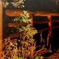 【高知県心霊スポット】見返り橋