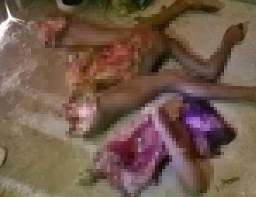 【グロ画像】食人の習慣がある国で行方不明になった10歳少女さんの末路→バラバラに解体されて中身取り出された状態で発見されるとか・・・ ※閲覧注意