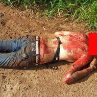 【グロ画像】クズ男にお持ち帰りされた女の子 ブラ外されからの断頭されて生首だけコロコロ転がされてしまった模様w ※女死体