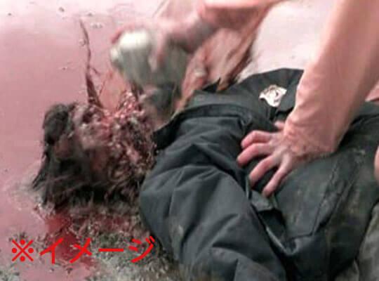 【グロ動画】原型がわからない 顔を入念に破壊されて殺害された男性がエグ過ぎる・・・