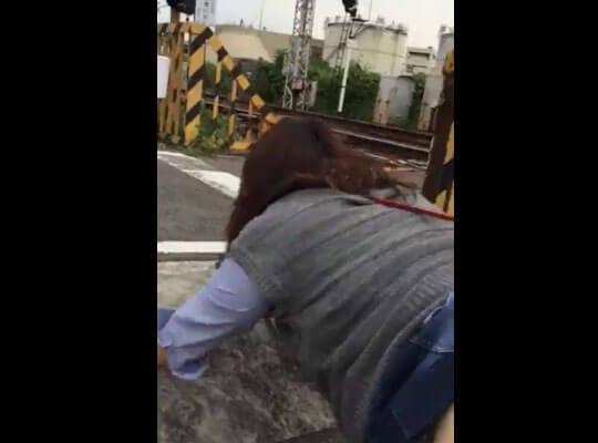 【個人撮影】バカップルさん 踏切の前でセックスするという暴挙にでるw