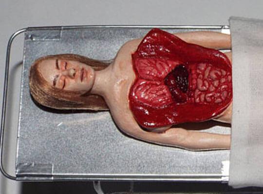 【グロ動画】高画質 女の子の死体を解剖し内蔵を取り出していく無修正映像