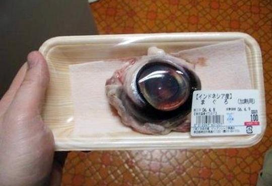 【衝撃映像】漁師がドヤ顔で魚の目の食べ方をレクチャーwww