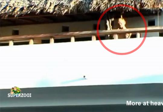 【自殺映像】自宅のベランダでぶら下がってるメキシコのおじいちゃん・・・