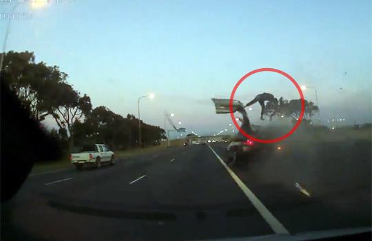 【事故映像】高速道路でクラッシュ!窓から何かが飛び出した!?