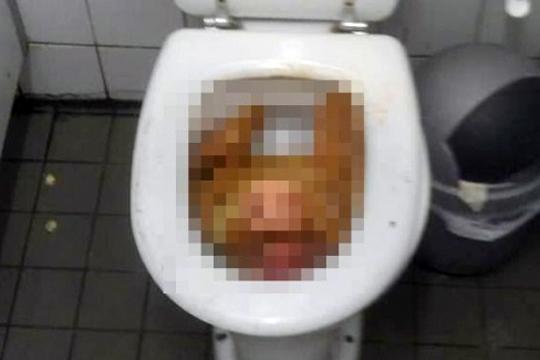 【ヤバイ】 トイレのフタを開けるとそこには恐ろしいものが・・・・・・。
