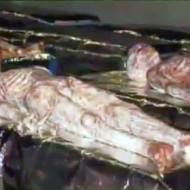【UMA】ロズウェル事件の宇宙人映像まとめて見た ※動画有り