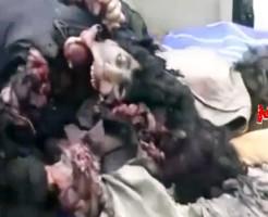 【グロ動画】戦争の被害者・・・グロ過ぎる死体の山 ※閲覧注意
