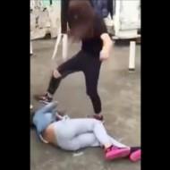 【中国いじめ】女子高生の顔面蹴り続けるヤバイいじめ動画