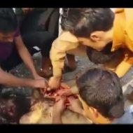 【食人】死亡したISIS戦闘員から心臓取り出して食い散らかす一般市民の一部始終・・・画面外でえずき声めっちゃしてるんだが・・・ ※動画