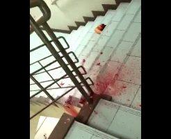 【グロ動画】大学2回生の女子大生が20階から飛び降り自殺した結果 → 足と肉片が踊り場に・・・ 閲覧注意