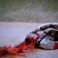 【グロ注意】スイカ割りのノリで生きた人間の頭をツルハシで割ってみた 動画