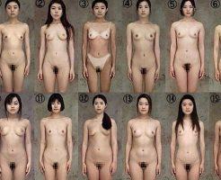 【エロ画像】裏社会で流通している「性奴隷カタログ」入手できたけど質問ある? ※閲覧注意