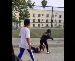 【ロリ喧嘩】まだJCぐらいの少女さんが殴り合いしてるんやが・・・おっぱいがポロリして今それどころじゃないw ※衝撃映像