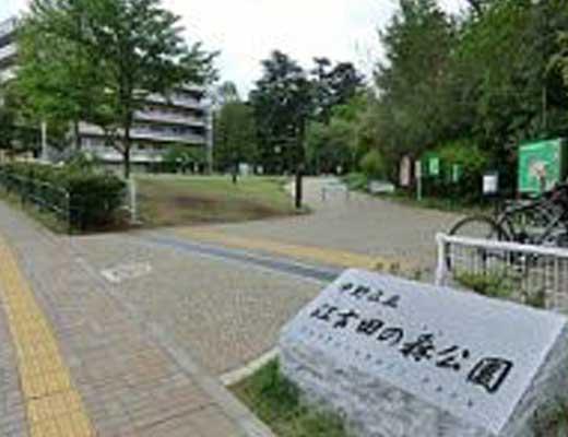 江古田の森公園風景写真