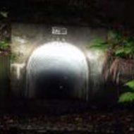 【新潟県心霊スポット】熊沢トンネル