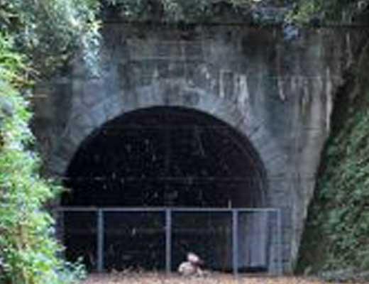 旧加茂坂トンネル風景写真
