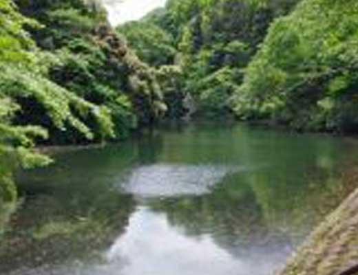 散在ガ池森林公園(鎌倉湖)風景写真