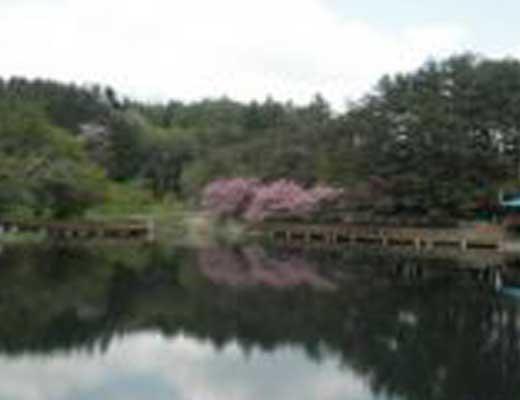 すずらん池風景写真