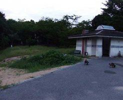 【岡山県心霊スポット】種松山山頂公園