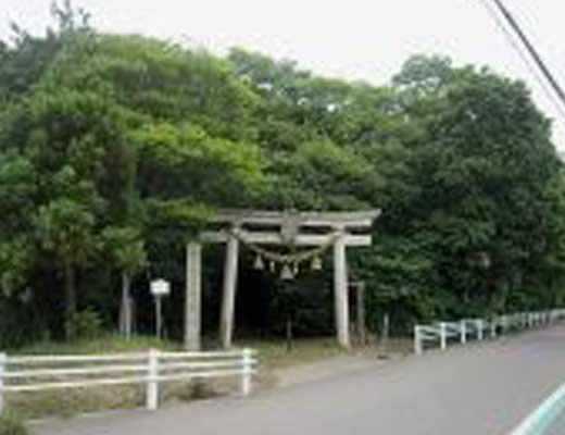 天狗の森(八坂神社)風景写真