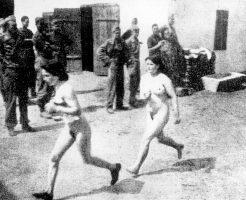 【閲覧注意】ドイツの負の遺産、ナチスの人体実験ギャラリー怖すぎ