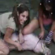【グロ動画】未成年のロリ少女さん二人 笑顔で生きた豚をナイフで殺していく・・・ ※動物解体映像