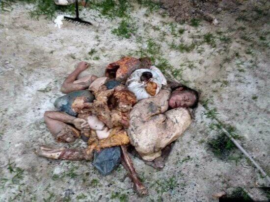 ブラジルの食人鬼画像