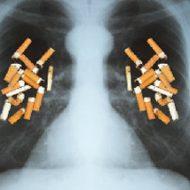 喫煙者の皆様は覚悟してご覧ください…600本の煙草を吸うと肺がどうなるのか実験してみた結果・・・