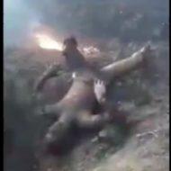 戦闘機が墜落→即効現場に駆けつけると瀕死のパイロットと黒コゲの死体が散乱する地獄絵図