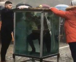 子どもたちがトラウマになる水中脱出マジック・ショー事故