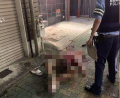 名古屋刺殺事件のガチの殺人動画がSNSで拡散…犯人の野獣のような雄たけびと女性の悲鳴